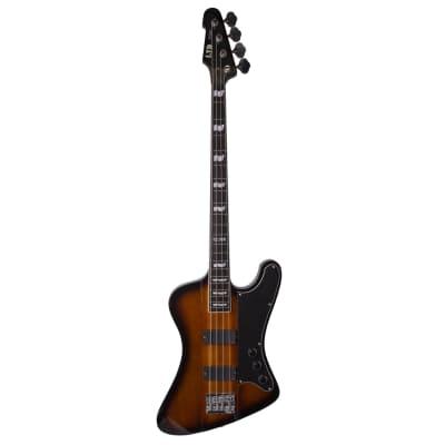 ESP LTD Phoenix-1004 2011 - 2013