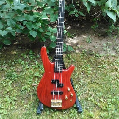 Fender Prophecy III Bass 1993 - 1994