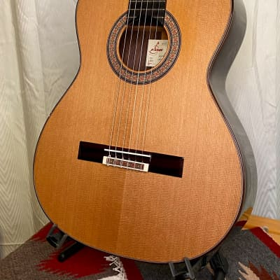 Picado Model 60 Classical Guitar Cedar & Indian Rosewood w/case  *made in Spain for sale