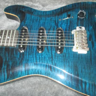 Brian Paul  Artist Pro Blue Maple for sale