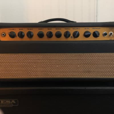 Bogner Shiva EL34 silver back panel (early 2000s) Early 200s