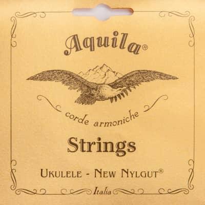 Aquila 11U New Nylgut Tenor Ukulele Strings, High D Tuning EGBD
