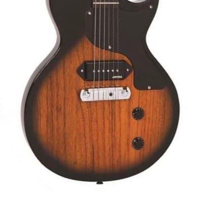 Vintage V120TB  Two Tone Sunburst