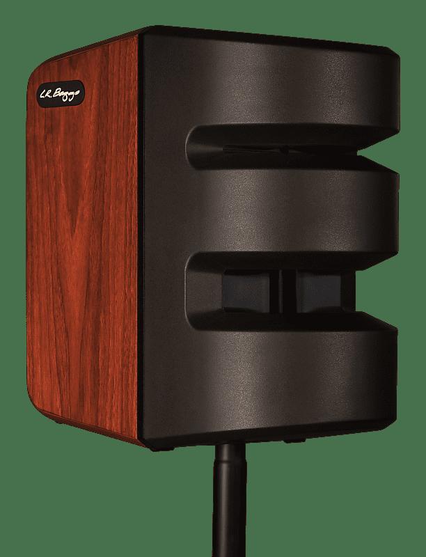 L R Baggs Synapse Acoustic Pa Portable Sound System Reverb