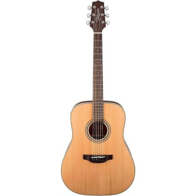 Takamine GD20 Dreadnought - Natural Acoustic Guitar, GD20NS for sale