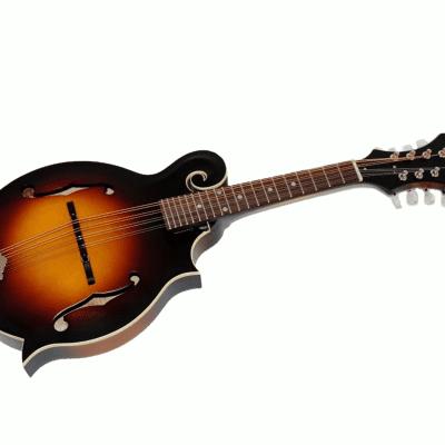 The Loar LM-590-MS Professional F-Style Mandolin