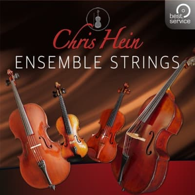 Best Service Chris Hein Ensemble Strings Upgrade