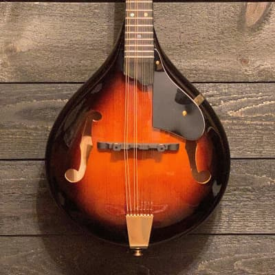 Gold Tone GM-A+ Rigal Signature A-Style Acoustic Electric Mandolin w/ Case for sale