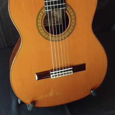 1997 Domingo Ortega Signed Brazilian Rosewood Classical Guitar