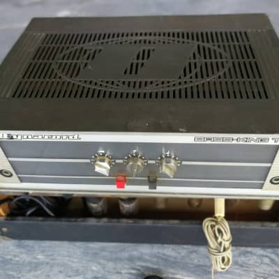 1970's Dynacord Bass King T Grey Valve Bass Guitar Amplifier Head made in Germany for sale