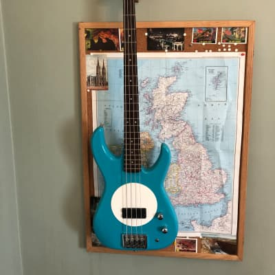 Fleabass Street Bass Blue & White Bass Guitar for sale