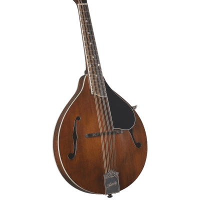 Kentucky KM-256 Deluxe A-Model Mandolin WITH Matching Kentucky Deluxe Gig Bag–  Transparent Brown for sale