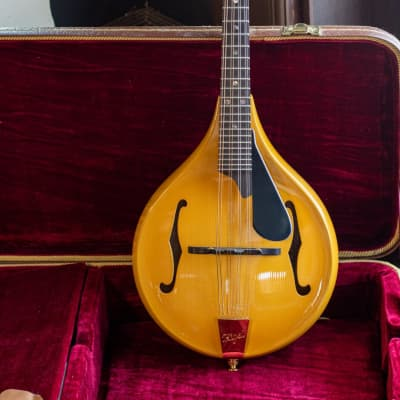 Rigel A+ Deluxe Mandolin for sale