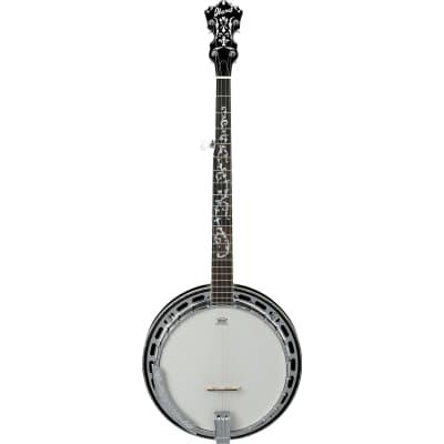 Ibanez 5 String Banjo B300 for sale