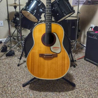 Applause AA24 1976 Natural for sale