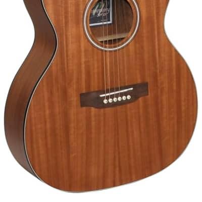Freshman FALTDWALO All Walnut Acoustic Guitar for sale