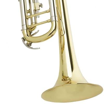 Antigua Winds X/P TR1502LQ Bb Trumpet