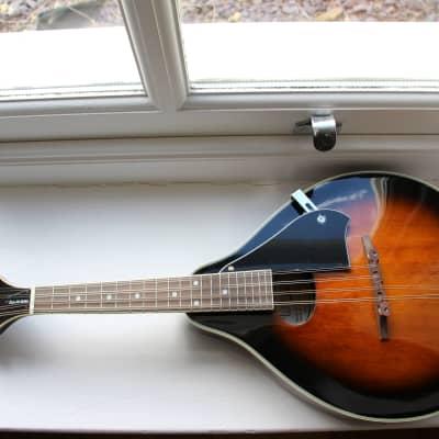 Tanglewood Teardrop Mandolin for sale