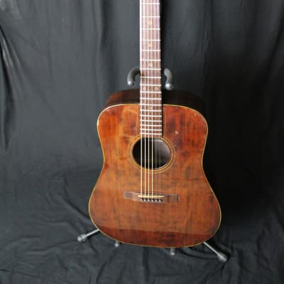 Daion The '79BR Acoustic Guitar MIJ for sale