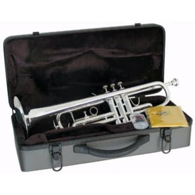Lauren LTR110 Student Bb Trumpet Outfit w/ Case