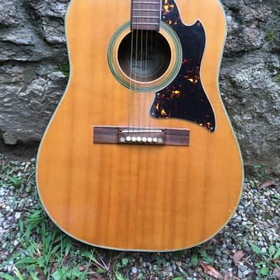 Rare Kent Vintage Acoustic 1960's for sale