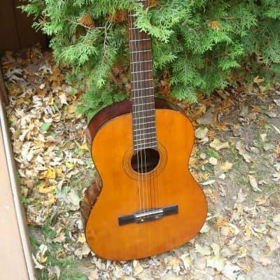 1960's Conqueror   PN-5  Classical guitar Japan for sale