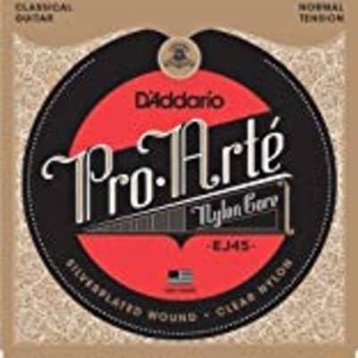D'ADDARIO PRO-ARTE CLR/SILVER NORM for sale