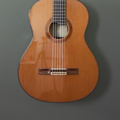 Beauregard Nylon Jazz: Redwood/Macassar Ebony for sale