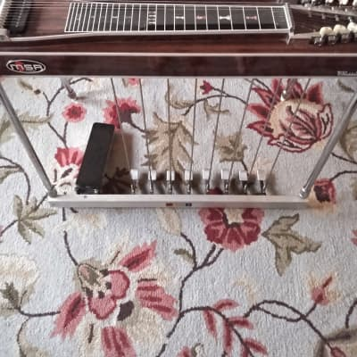 MSA double 10  pedal steel , 2  levers ,8 pedals ,vol pedal OHSC 1970s built/signed by Bud Carter