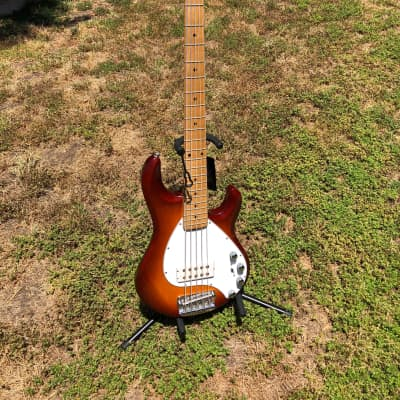 Ernie Ball Music Man StingRay 5  1997 Sunburst for sale