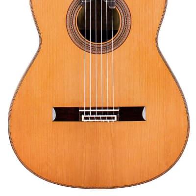 German Vazquez Rubio Monarca Elite 2019 Classical Guitar Cedar/CSA Rosewood for sale