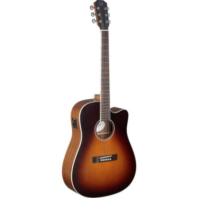 James Neligan EZR-DCFI Ezra Series Dreadnought Cutaway 4/4 Size 6-String Acoustic-Electric Guitar for sale