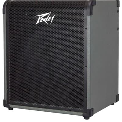 "Peavey MAX 250 250-watt 1x15"" Bass Combo Amp Black/Gray"