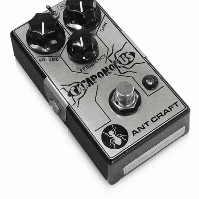 Ant Craft Camponotus Overdrive
