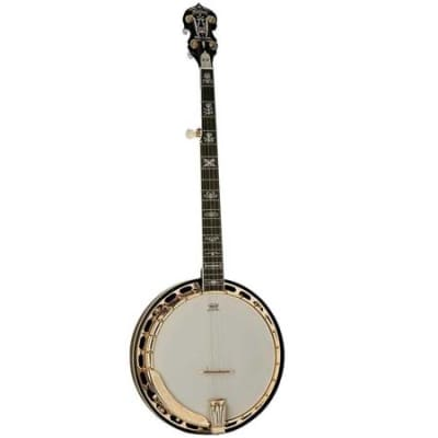 Washburn Americana Series B17K 5 String Banjo with Remo Top, Flame Maple Back and Sides, 22 Frets, Maple (Engraved Heel & Back of Headstock) Neck Gloss - Tobacco Sunburst