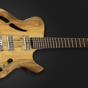 Dolan Custom Guitars - 'Mimas Legacy' Semi Hollow for sale