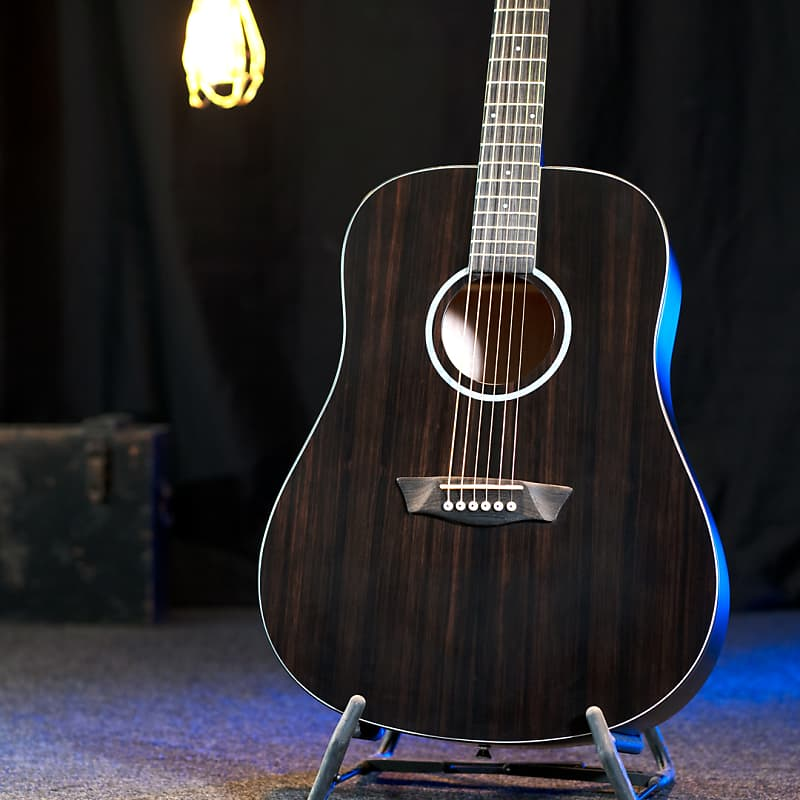 Washburn Deep Forest Ebony D Dreadnought Acoustic Guitar