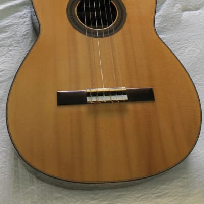 Dominique Field  1998 French Polish for sale