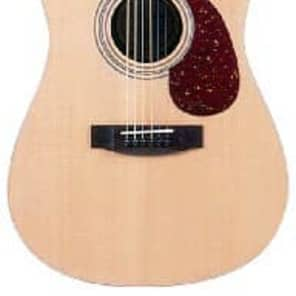 JB Player JB20L Dreadnought - Left Handed for sale