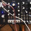 Qu-Bit Electronix Pulsar 2018 Black w/ Box