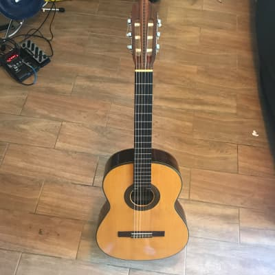 Vintage 1974 Ariana A588 Natural for sale