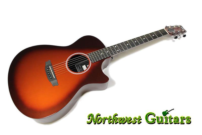RainSong H-WS1000N2T   Northwest Guitars