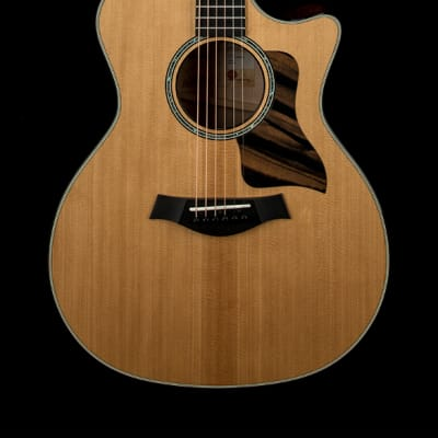Taylor 614ce V-Class #49050 (Factory Used)