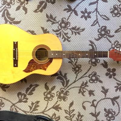 Vintage Egmond Acoustic made in Holland for sale