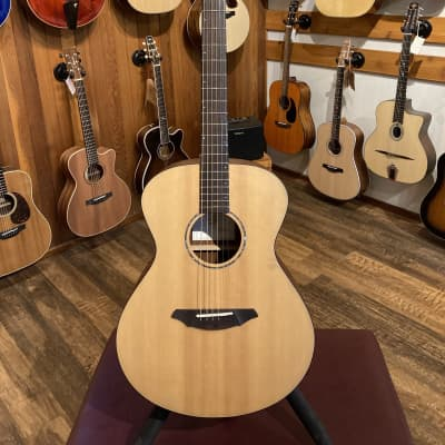 Breedlove AC200/SM (used) for sale