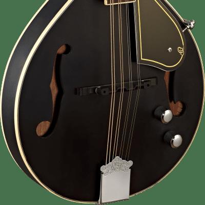 Ortega Ortega RMAE40SBK A-Style Mandoline satin black Ladendemo Schwarz for sale