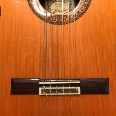 Dauphin #40 Late 70s-80 Natural for sale
