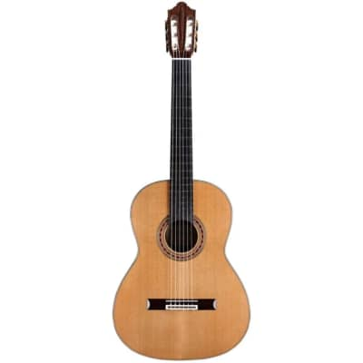 Cordoba Friederich CD PF - Solid Canadian Cedar Top, Solid Rosewood Back & Sides, With Cordoba Humid for sale