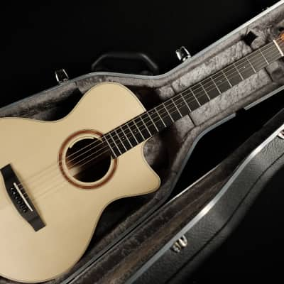 Lakewood A-14 CP  - Auditorium Model with cutaway and pickup system for sale