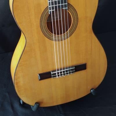 1966 Jose Dominguez Spruce Top Blanca Flamenco Guitar